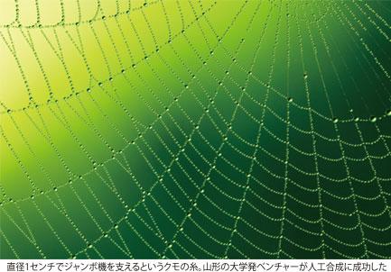 バイオミメティクス(生物模倣技術)を探る
