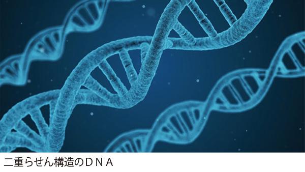 始まった究極の個別化医療「ゲノム医療」