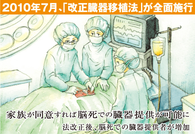 2010年7月、「改正臓器移植法」が全面施行