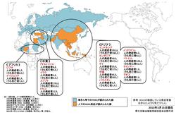 鳥インフルエンザの脅威 中国で感染広がる