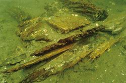 歴史研究で注目を集める水中考古学