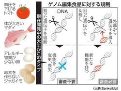 食卓に登場するゲノム編集食品を考える